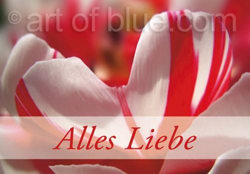 """Grusskarte """"Alles Liebe"""" Tulpenherz P401"""
