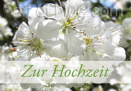 Grusskarte Zur Hochzeit Kirschblüte p445