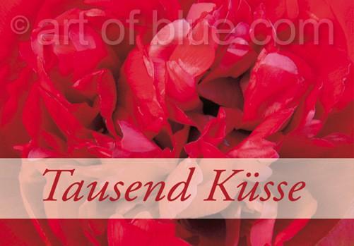 """Grusskarte Paeonia """"Tausend Küsse"""" p424"""