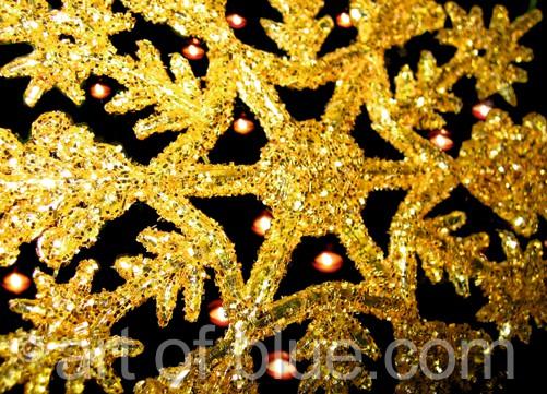 Postkarte Weihnachtsstern c319