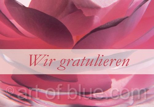 Wir gratulieren Rosenblütenblätter p436