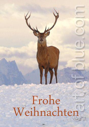 Weihnachtskarte Hirsch P236