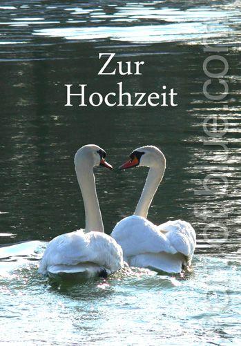 """Grusskarte Schwäne """"Zur Hochzeit"""""""