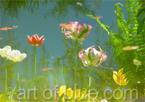 Grusskarte Blütenteich P201