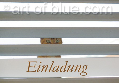 """Grusskarte """"Einladung"""" Katzenblick p440"""