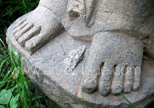 p206_at-buddahs-feet
