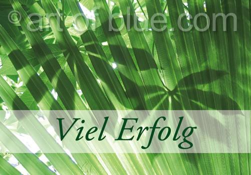 Grusskarte Viel Erfolg Dschungelgrün p415