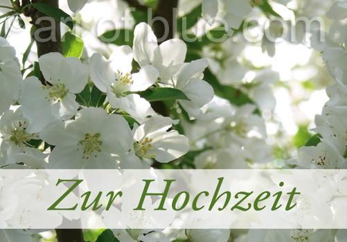 Grusskarte Apfelblüte Zur Hochzeit P402
