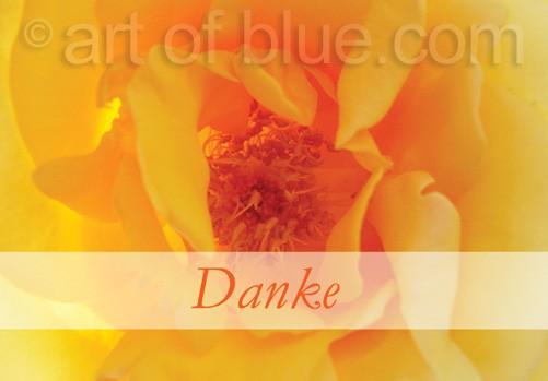 """Grusskarte """"Danke"""" Rose Ghislaine p447"""