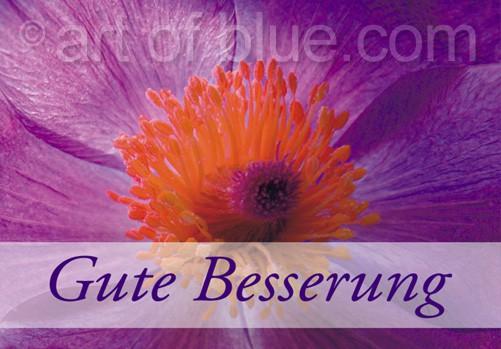 Grusskarte Gute Besserung Pulsatilla p425